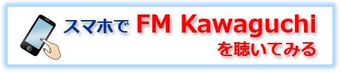 FMK_smartphone